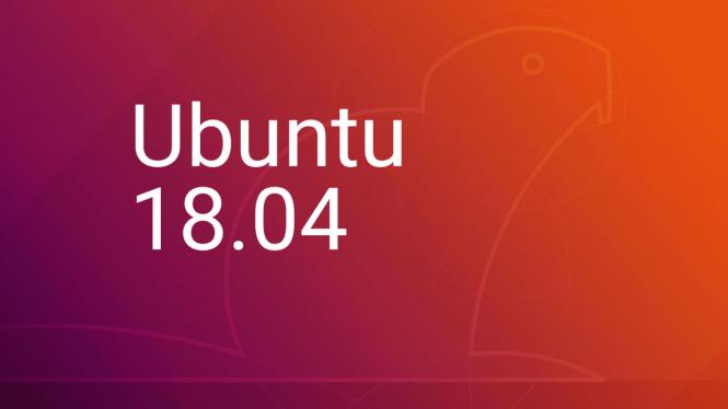 Ubuntu Server 18.04.5 LTS (Bionic Beaver)
